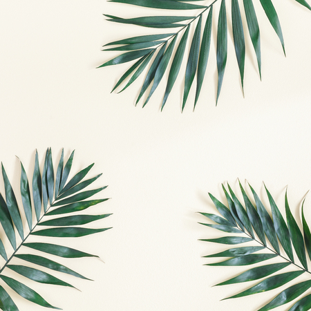 Leaf pattern. Green tropical leaves on yellow background. Summer concept. Flat lay, top view, copy space, square
