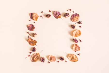 Autumn floral composition. Frame made of dried flowers and leaves on pastel beige background. Autumn, fall concept. Flat lay, top view, copy space Standard-Bild - 106707254
