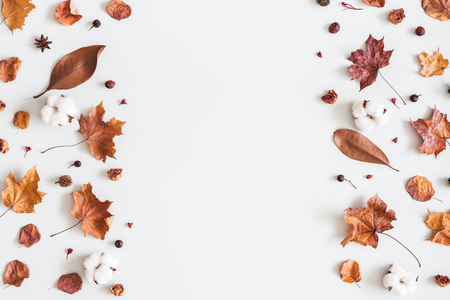 Autumn composition. Frame made of cotton flowers, dried maple leaves on pastel gray background. Autumn, fall concept. Flat lay, top view, copy space Standard-Bild - 106707332
