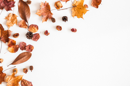 Autumn composition. Frame made of autumn dried leaves on white background. Flat lay, top view, copy space Banco de Imagens