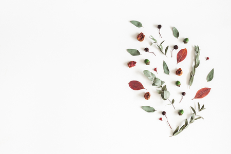 Autumn composition. Pattern made of eucalyptus branches, rose flowers, dried leaves on white background. Autumn, fall concept. Flat lay, top view, copy space Standard-Bild - 106707402