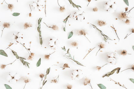 Autumn composition. Pattern made of eucalyptus branches, dried flowers on white background. Autumn, fall concept. Flat lay, top view Stock Photo