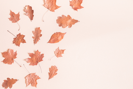 Autumn composition. Frame made of autumn dried leaves on pastel beige background. Flat lay, top view, copy space Reklamní fotografie