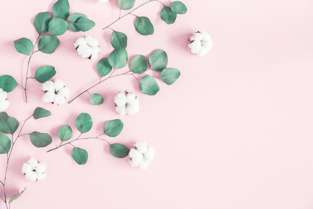 Flowers composition. Eucalyptus leaves and cotton flowers on pastel pink background. Flat lay, top view, copy space Stock Photo