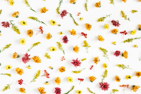 Autumn floral composition. Pattern made of fresh flowers on white background. Autumn, fall concept. Flat lay, top view Stock Photo