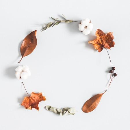 Herbstkomposition. Kranz aus Eukalyptuszweigen, Baumwollblüten, getrockneten Blättern auf pastellgrauem Hintergrund. Herbst-Herbst-Konzept. Flache Lage, Draufsicht, Kopierraum, Quadrat