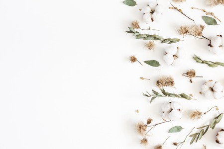 Autumn composition. Frame made of eucalyptus branches, dried flowers on white background. Autumn, fall concept. Flat lay, top view, copy space
