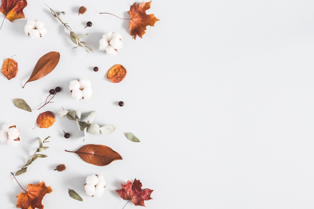 Autumn composition. Frame made of eucalyptus branches, cotton flowers, dried leaves on pastel gray background. Autumn, fall concept. Flat lay, top view, copy space Stock Photo