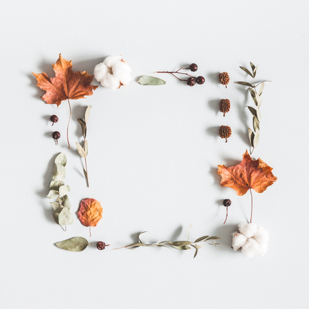Autumn composition. Frame made of eucalyptus branches, cotton flowers, dried leaves on pastel gray background. Autumn, fall concept. Flat lay, top view, copy space, square Stock Photo