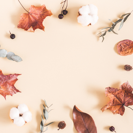 Autumn composition. Frame made of eucalyptus branches, cotton flowers, dried leaves on pastel beige background. Autumn, fall concept. Flat lay, top view, copy space, square