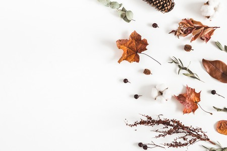 Autumn composition. Frame made of cotton flowers, dried leaves on white background. Autumn, fall concept. Flat lay, top view, copy space
