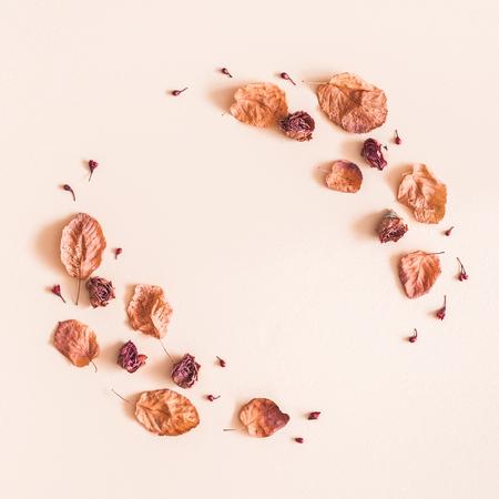 Herbstliche Blumenkomposition. Rahmen aus getrockneten Blumen und Blättern auf pastellbeigem Hintergrund. Herbst-Herbst-Konzept. Flache Lage, Draufsicht, Kopierraum Standard-Bild