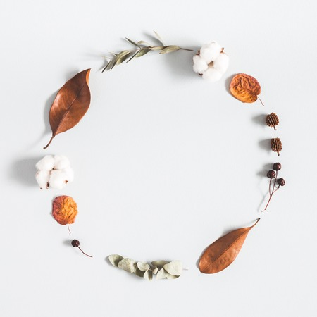 Autumn composition. Wreath made of eucalyptus branches, cotton flowers, dried leaves on pastel gray background. Autumn, fall concept. Flat lay, top view, copy space, square Standard-Bild - 107490338