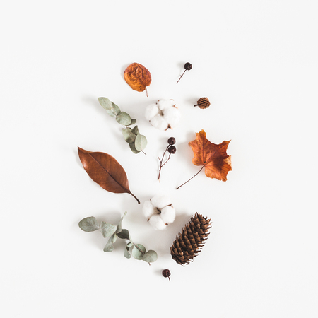 Autumn composition. Pattern made of eucalyptus branches, cotton flowers, dried leaves on white background. Autumn, fall concept. Flat lay, top view Standard-Bild - 107490472