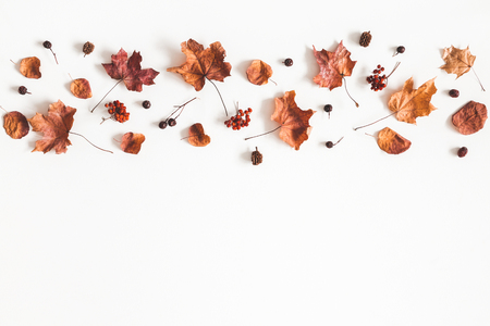 Autumn composition. Pattern made of dried leaves on white background. Autumn, fall concept. Flat lay, top view, copy space 写真素材 - 107490509