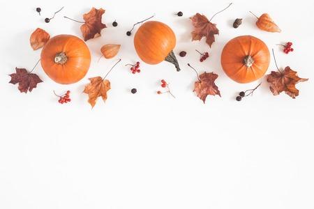 Composición de otoño. Calabazas, hojas secas sobre fondo blanco. Otoño, otoño, concepto de halloween. Endecha plana, vista superior, espacio de copia Foto de archivo