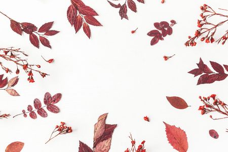 Autumn composition. Frame made of autumn flowers and leaves on white background. Flat lay, top view, copy space Standard-Bild - 108316274