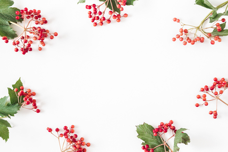 Autumn composition. Frame made of berries on white background. Autumn, fall concept. Flat lay, top view, copy space Foto de archivo - 108316278