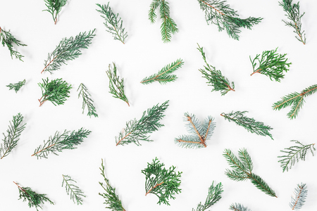 Christmas composition. Pattern made of different winter plants on white background. Christmas, winter, new year concept. Flat lay, top view Zdjęcie Seryjne