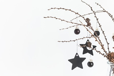 Larch branches and black decorations on white background. Scandinavian style. Front view, copy space, close up