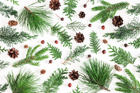 Christmas composition. Coniferous tree branches on white background. Christmas, winter, new year concept. Flat lay, top view Stock Photo