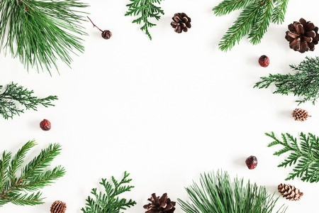 Christmas composition. Coniferous tree branches on white background. Christmas, winter, new year concept. Flat lay, top view, copy space