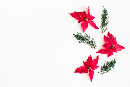 Christmas composition. Frame made of christmas poinsettia and fir branches on white background. Top view, flat lay, copy space Stock Photo