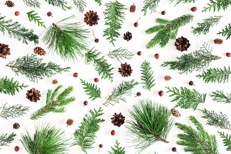 Christmas composition. Coniferous tree branches on white background. Christmas, winter, new year concept. Flat lay, top view Stockfoto