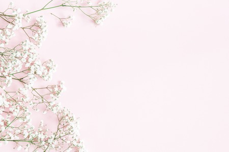 Flowers composition. Gypsophila flowers on pastel pink background. Flat lay, top view, copy space Stok Fotoğraf