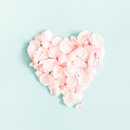 Flowers composition. Rose flower petals on pastel blue background. Valentines Day, Mothers Day concept. Flat lay, top view, square