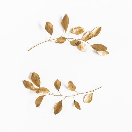 Foglie di eucalipto su sfondo bianco. Corona fatta di rami di eucalipto dorato. Disposizione piatta, vista dall'alto, copia spazio, quadrato
