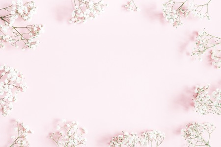 Flowers composition. Gypsophila flowers on pastel pink background. Flat lay, top view, copy space Standard-Bild