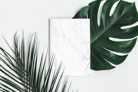 Composizione estiva. Foglie di palma tropicale, carta marmorizzata vuota su sfondo grigio pastello. concetto di estate. Disposizione piana, vista dall'alto, copia spazio