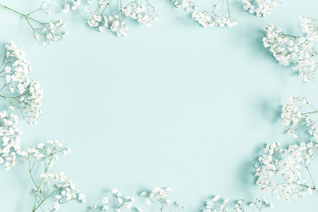 Flowers composition. Gypsophila flowers on pastel blue background. Flat lay, top view, copy space Standard-Bild