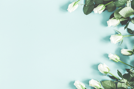 Flowers composition. White rose flowers on pastel blue background. Flat lay, top view, copy space