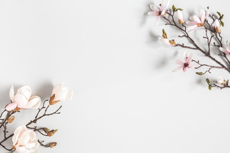 Flowers composition. Magnolia flowers on pastel gray background. Flat lay, top view, copy space Foto de archivo - 123629197