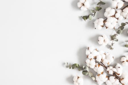 Blumen Zusammensetzung. Eukalyptusblätter und Baumwollblumen auf pastellgrauem Hintergrund. Flache Lage, Ansicht von oben, Kopienraum