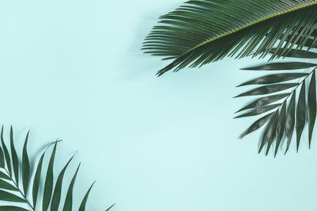 Composizione estiva. Foglie di palma su sfondo blu pastello. concetto di estate. Disposizione piana, vista dall'alto, copia spazio