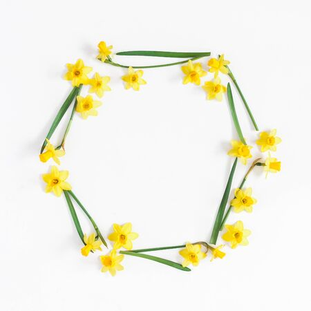 Flowers composition. Narcissus flowers on white background. Flat lay, top view, square, copy space