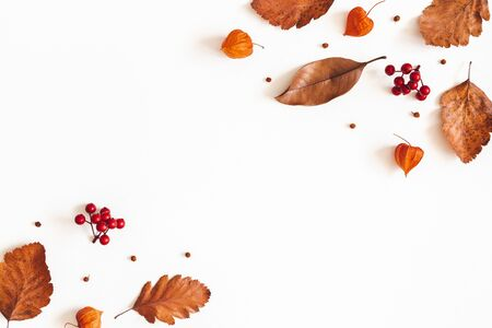 Autumn composition. Dried leaves, flowers, rowan berries on white background. Autumn, fall, thanksgiving day concept. Flat lay, top view, copy space 写真素材