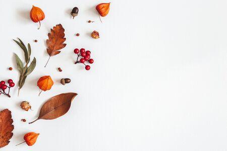 Composición de otoño. Flores de Physalis, hojas de eucalipto, bayas de serbal sobre fondo blanco. Otoño, otoño, concepto de día de acción de gracias. Endecha plana, vista superior, espacio de copia Foto de archivo