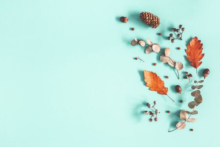 Autumn composition. Dried leaves, flowers on pastel blue background. Autumn, fall, winter concept. Flat lay, top view, copy space Standard-Bild