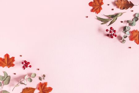 Autumn composition. Dried flowers, eucalyptus leaves, rowan berries on pink background. Autumn, fall, thanksgiving day concept. Flat lay, top view, copy space 写真素材