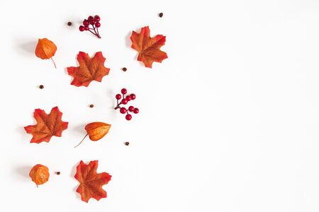 Autumn composition. Pattern made of flowers, maple leaves, berries on white background. Autumn, fall, thanksgiving day concept. Flat lay, top view, copy space Stock Photo
