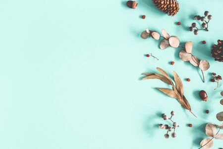 Winter composition. Dried leaves, berries, pine cones on pastel blue background. Autumn, fall, winter concept. Flat lay, top view, copy space