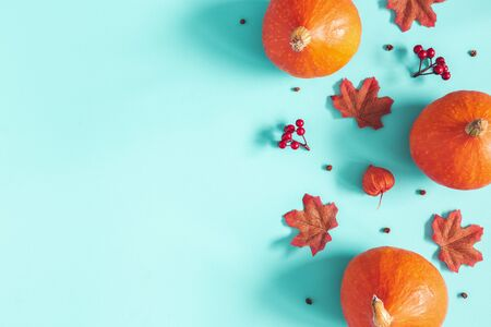 Autumn composition. Dried leaves, pumpkins, flowers, rowan berries on blue background. Autumn, fall, halloween, thanksgiving day concept. Flat lay, top view, copy space
