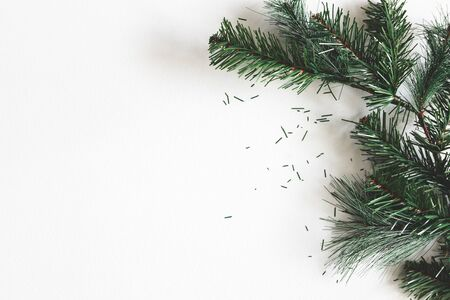 Christmas composition. Fir tree branches on gray background. Christmas, winter, new year concept. Flat lay, top view, copy space Zdjęcie Seryjne