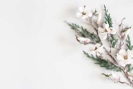 Christmas composition. Fir tree branches, flowers on pastel gray background. Christmas, winter, new year concept. Flat lay, top view, copy space Zdjęcie Seryjne