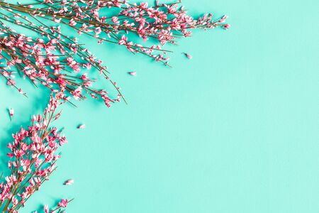 Flowers composition. Pink flowers on blue background. Flat lay, top view, copy space