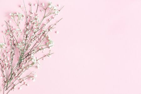 Flowers composition. White flowers on pink background. Spring concept. Flat lay, top view, copy space